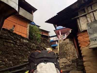 南部、ネパールに降り立つの巻_d0197762_10392247.jpg