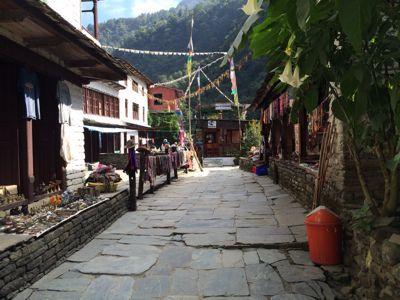 南部、ネパールに降り立つの巻_d0197762_1039986.jpg
