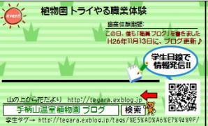 f0203094_1439487.jpg