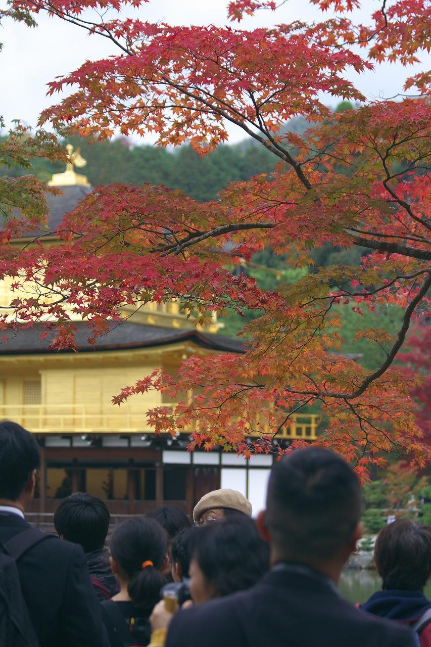 京都_b0174905_804884.jpg
