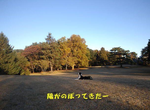 d0224111_18435974.jpg