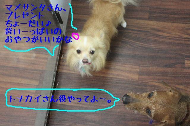 b0130018_18215012.jpg