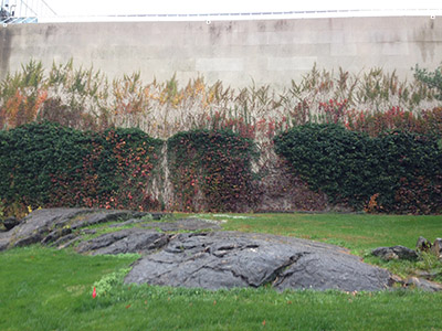 Autumn in NY_f0171840_1643863.jpg
