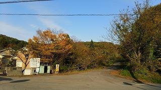 宮島峡紅葉情報_c0208355_13554337.jpg