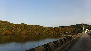 宮島峡紅葉情報_c0208355_14281162.jpg