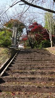 城山公園紅葉情報_c0208355_15104749.jpg