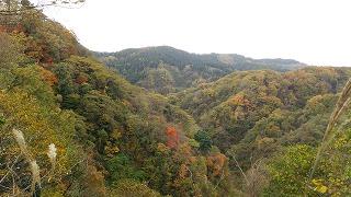 倶利伽羅県定公園周辺紅葉情報_c0208355_16293196.jpg