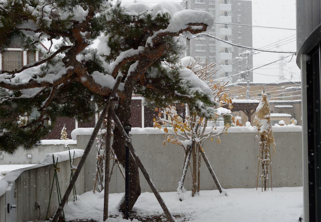 積雪_e0213363_23085965.jpg