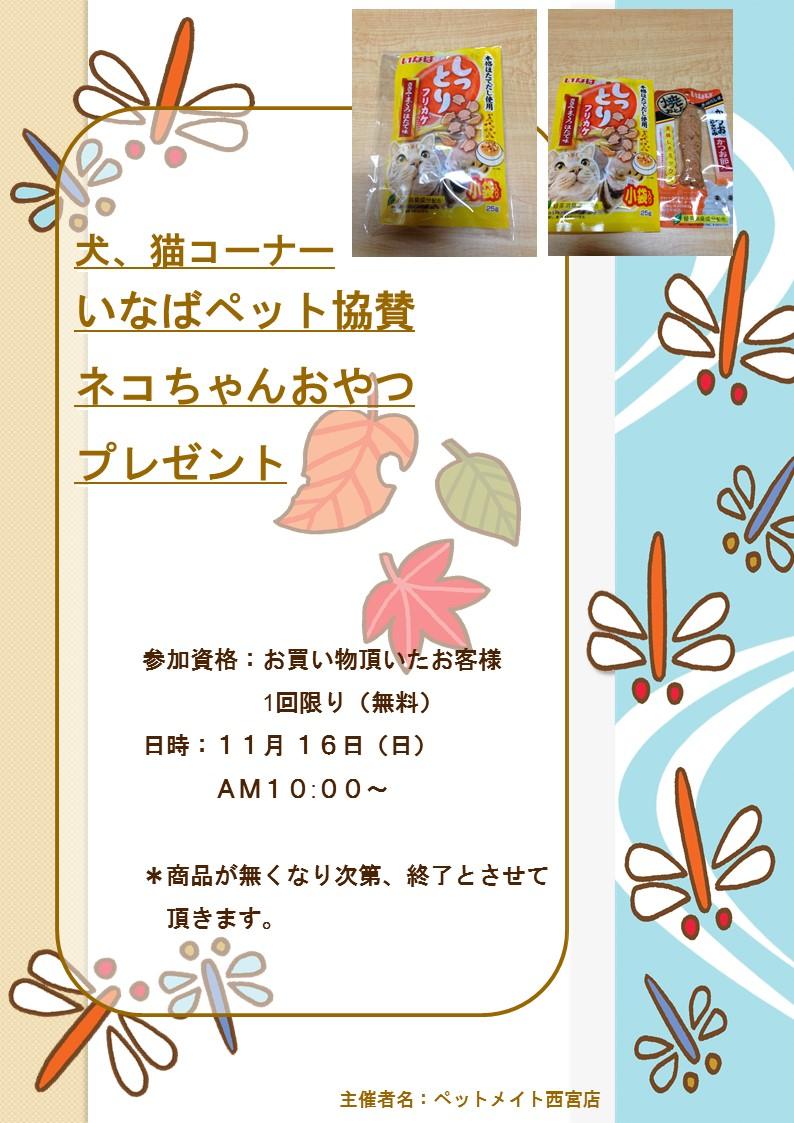 141114 11月16日(日)イベント告知_e0181866_9571812.jpg