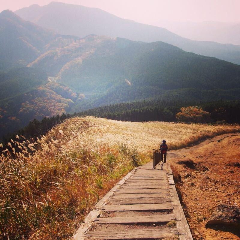 奈良の曽爾高原へハイキング_b0277377_10562669.jpg