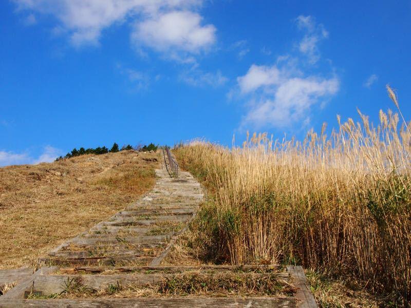 奈良の曽爾高原へハイキング_b0277377_10563110.jpg