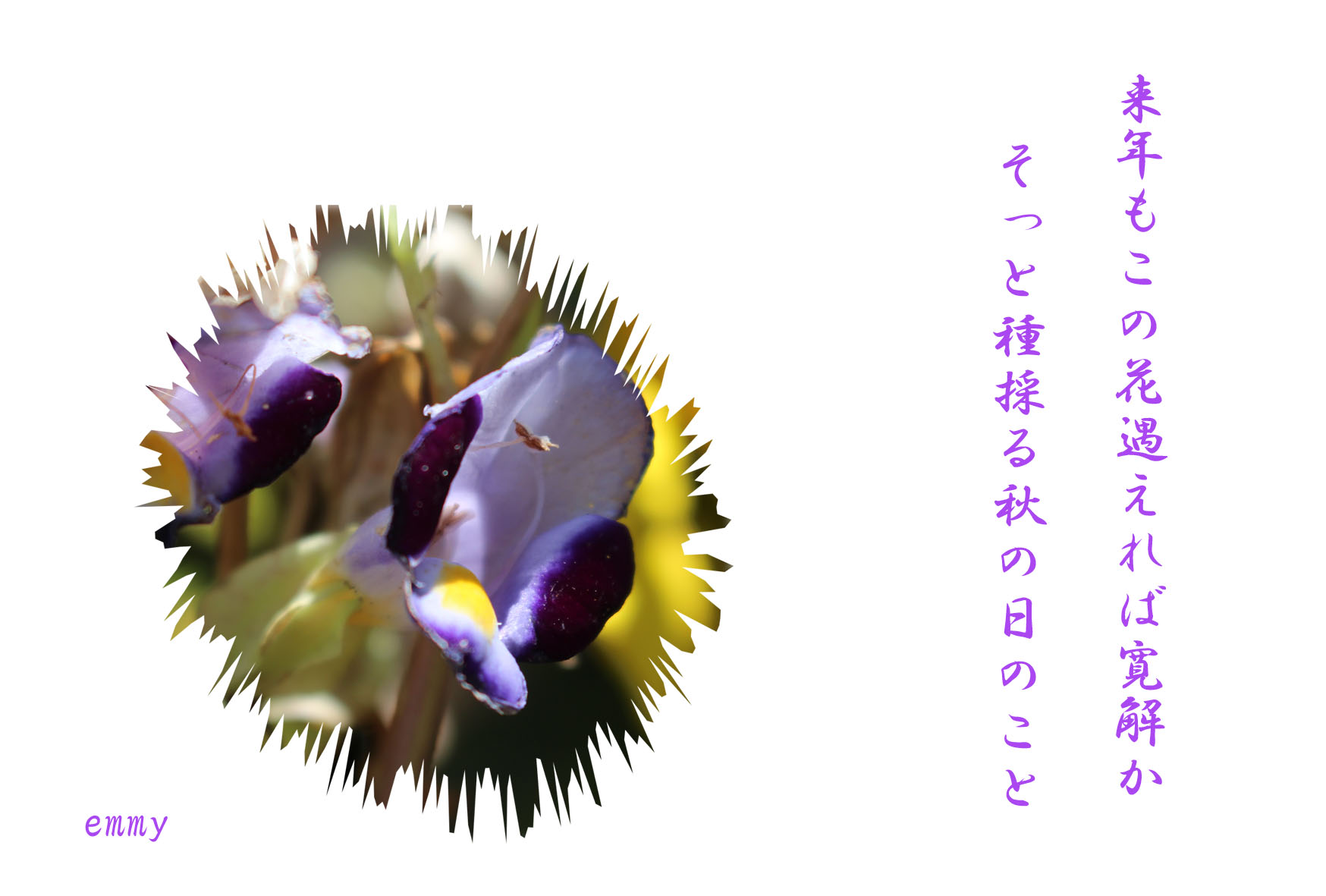 d0108506_21173443.jpg