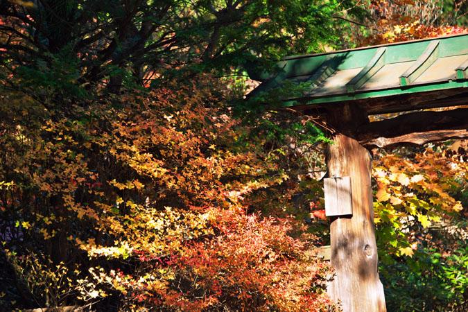 日光山内 二社一寺の紅葉1_a0263109_1347438.jpg