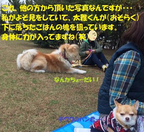 f0121712_6491712.jpg