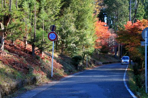 14紅葉めぐり8 京見峠から杉坂地蔵院へ_e0048413_19503927.jpg