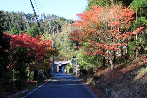 14紅葉めぐり8 京見峠から杉坂地蔵院へ_e0048413_19504464.jpg