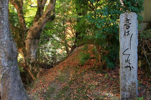 14紅葉めぐり8 京見峠から杉坂地蔵院へ_e0048413_19513248.jpg
