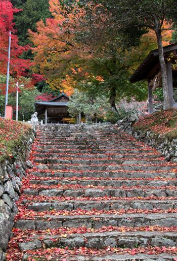 14紅葉めぐり 9 上弓削熊野神社_e0048413_20272059.jpg
