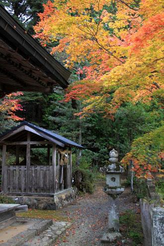 14紅葉めぐり 9 上弓削熊野神社_e0048413_20282138.jpg
