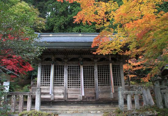 14紅葉めぐり 9 上弓削熊野神社_e0048413_20284219.jpg