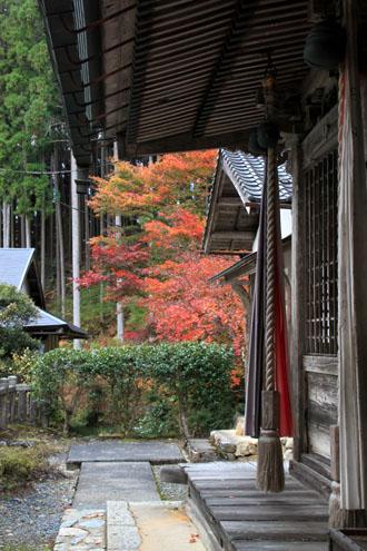 14紅葉めぐり 9 上弓削熊野神社_e0048413_2029727.jpg