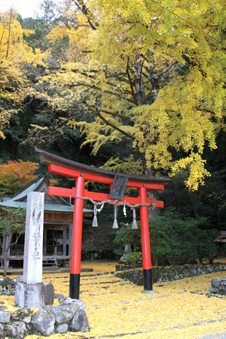 14黄葉めぐり10 落葉神社_e0048413_21462935.jpg