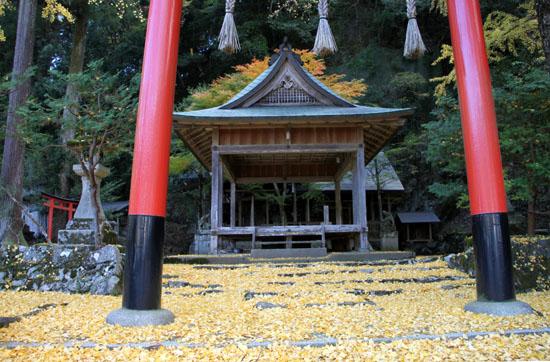 14黄葉めぐり10 落葉神社_e0048413_21465025.jpg