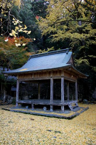 14黄葉めぐり10 落葉神社_e0048413_2147260.jpg
