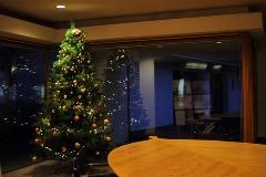 クリスマスツリー_b0212031_18445597.jpg