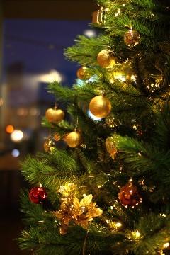 クリスマスツリー_b0212031_18465621.jpg