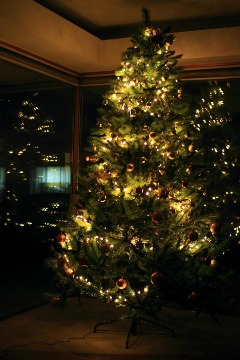クリスマスツリー_b0212031_18473985.jpg