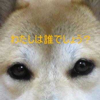 d0257938_2085915.jpg
