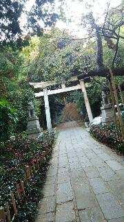 ☆赤坂氷川神社☆_f0008555_162439.jpg