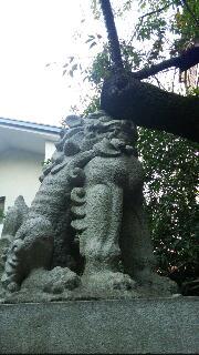 ☆赤坂氷川神社☆_f0008555_1632352.jpg