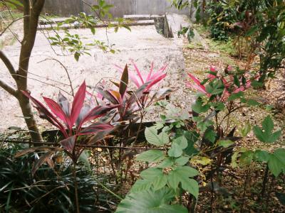秋の遠足_c0180460_23545034.jpg
