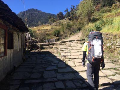 南部、ネパールの山林の中を歩くの巻_d0197762_1121111.jpg