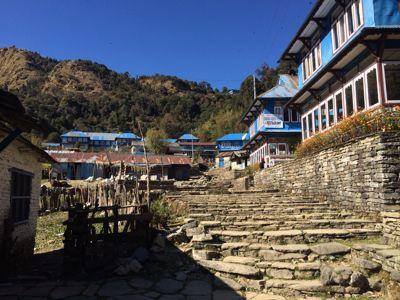 南部、ネパールの山林の中を歩くの巻_d0197762_11211161.jpg