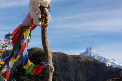 南部、ネパールの山林の中を歩くの巻_d0197762_11213912.jpg