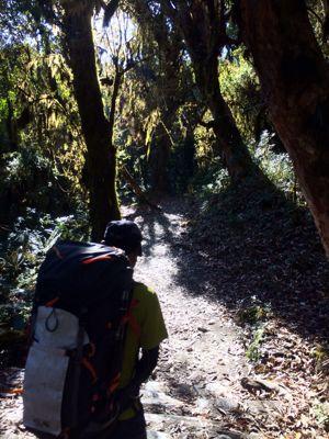 南部、ネパールの山林の中を歩くの巻_d0197762_11214465.jpg