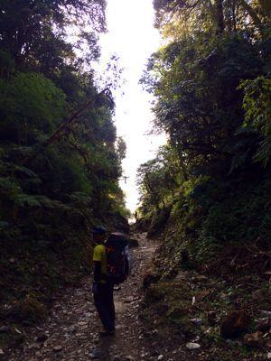 南部、ネパールの山林の中を歩くの巻_d0197762_11214727.jpg
