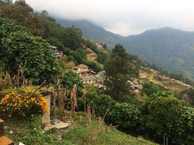 南部、ネパールの山林の中を歩くの巻_d0197762_11215566.jpg