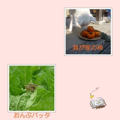 a0187087_18571460.jpg