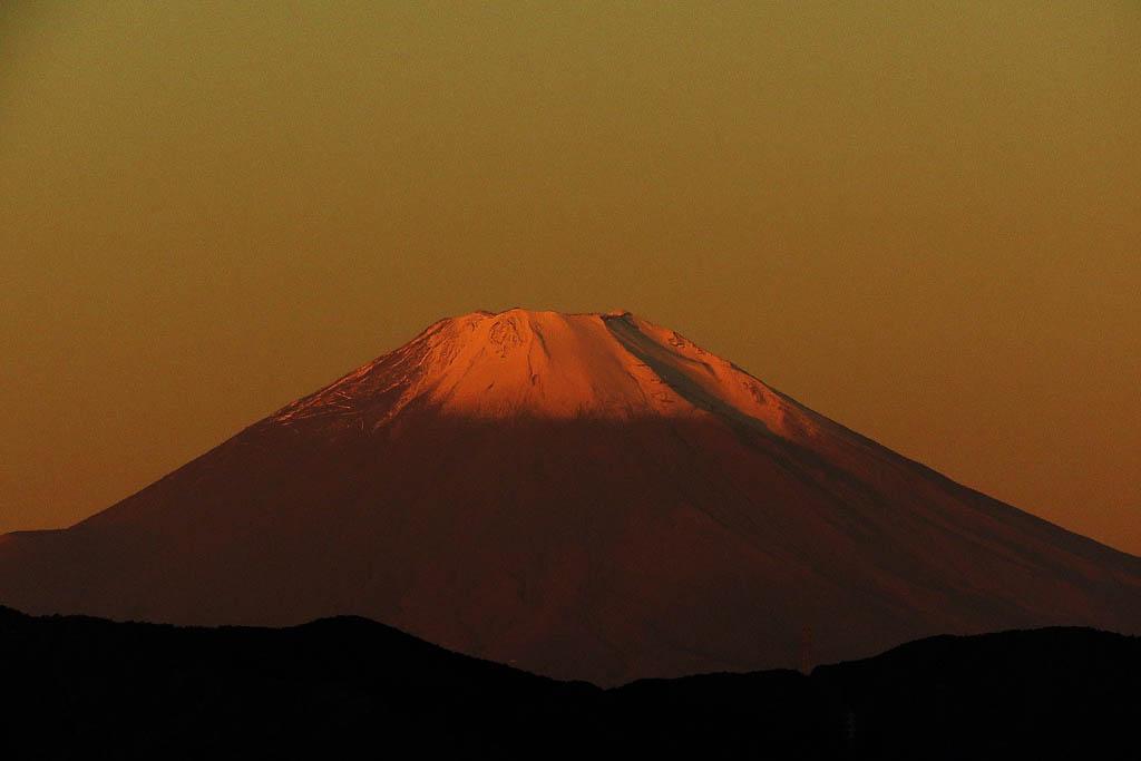 寒い朝/ホオアカ/お馴染みさん&コンデジで/赤富士/月・木星・レグルス/皇帝ダリヤに月_b0024798_117039.jpg
