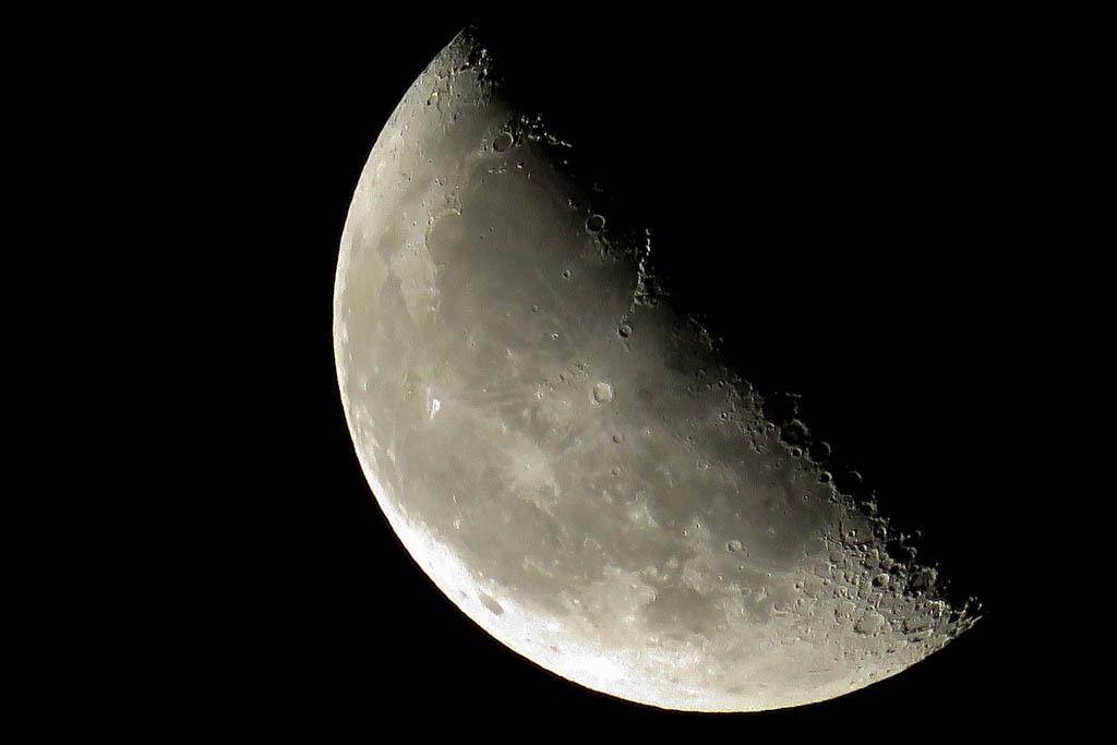 寒い朝/ホオアカ/お馴染みさん&コンデジで/赤富士/月・木星・レグルス/皇帝ダリヤに月_b0024798_1182382.jpg