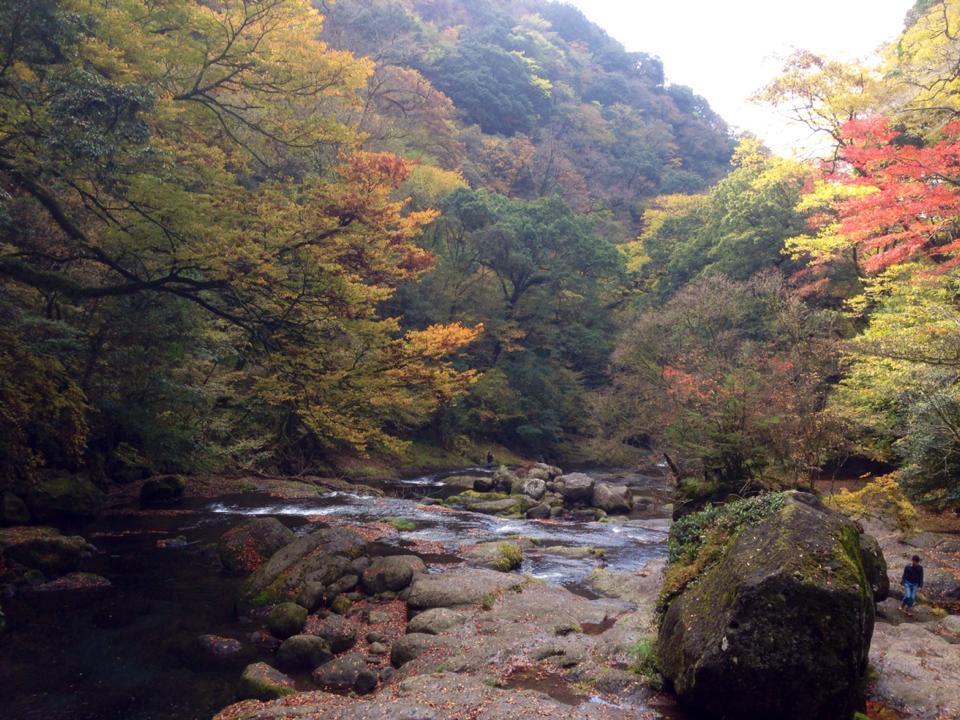 紅葉の季節 菊池渓谷も今なら_c0052304_15040959.jpg