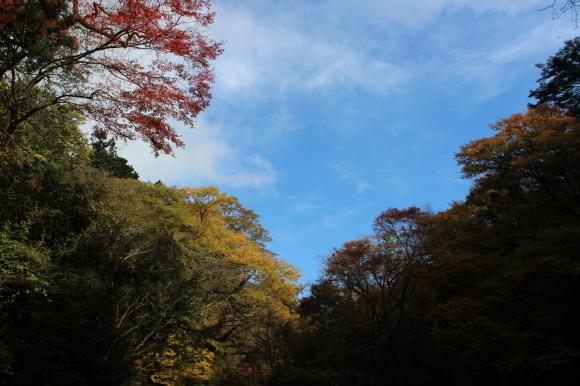 紅葉の季節 菊池渓谷も今なら_c0052304_15042488.jpg