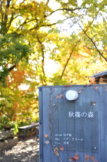 秋の古都へ、小さな旅。_d0174704_18493241.jpg