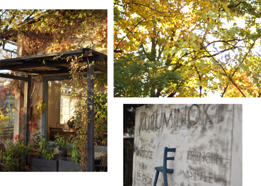 秋の古都へ、小さな旅。_d0174704_1954460.jpg