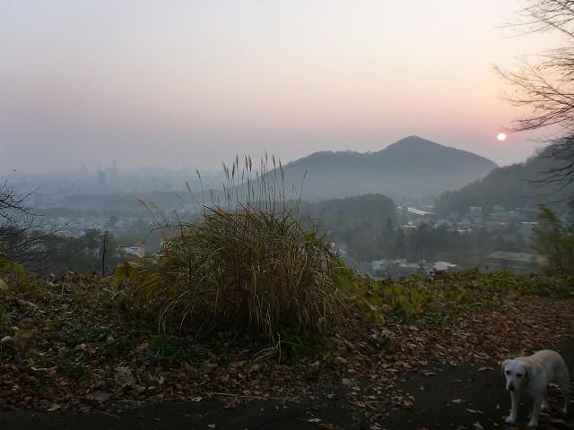 荒井山から_c0048117_13343314.jpg