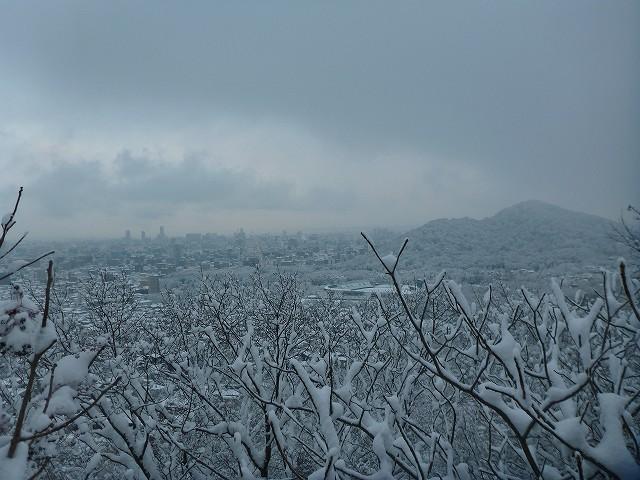 荒井山から_c0048117_13361791.jpg